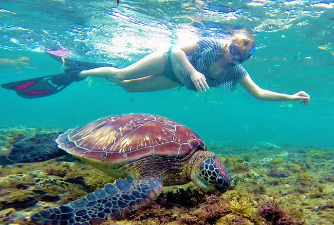 Pattaya – Coral Island Tour with Lunch